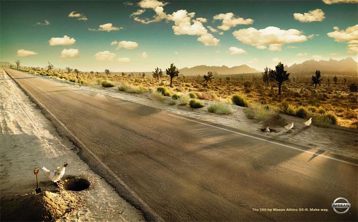 尼桑 汽车 野鸡篇平面 广告 创意 策划 高清图片